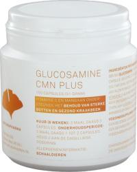 Naturapharma Glucosamine Cmn Plus
