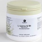 Groene Os L-lysine En Vitamine B6 Paardpony