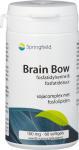 Springfield Brain Bow