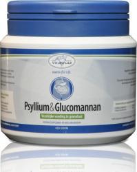 Vitakruid Psyllium & Glucomannan 450g